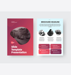 brochure template with design vector image