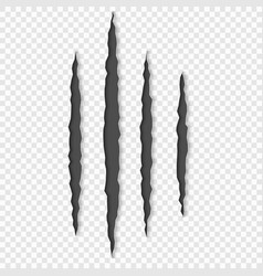 Claws scratches with shadows vector