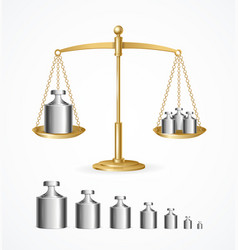 realistic detailed 3d calibration weight vector image