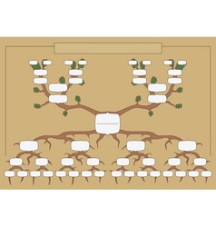 The genealogical tree vector image