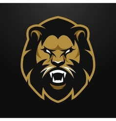 Angry Lion logo symbol vector image vector image