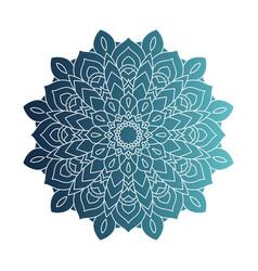 Decorative floral blue mandala ethnicity artistic vector