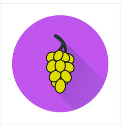 grapes simple icon on white background vector image