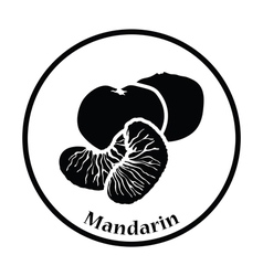 Icon of Mandarin vector