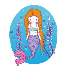 mermaid woman underwater with fishes and plants vector image