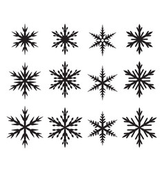 set of snowflakes in many style vector image