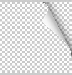 sheet transparent paper with twisted corner vector image