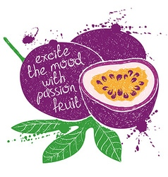 Isolated purple passion fruit silhouette vector