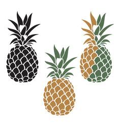 pineapple fruit set vector image vector image