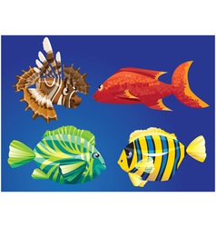 Red Sea Fishes vector image vector image