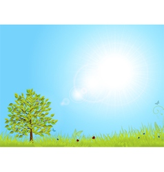 spring landscape with blue sky vector image vector image