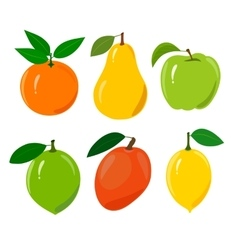 Set of juicy ripe fruit isolated on a white vector image