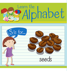 Flashcard letter S is for seeds vector