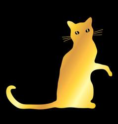 Golden cat over black vector