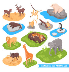Isometric zoo animal set vector