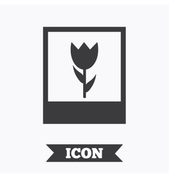 Macro photo frame icon Flower photography vector image