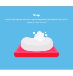Soap Concept Banner vector image