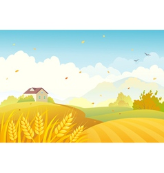 Fall fields vector image