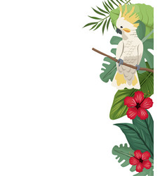 cockatoo card with hibiscus leaves jungle vector image