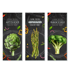 Healthy food vertical banners with vegetables vector