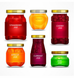 Homemade fruit jam jars vector