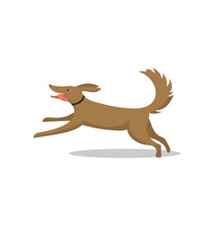 pet dog running breed with tongue isolated vector image
