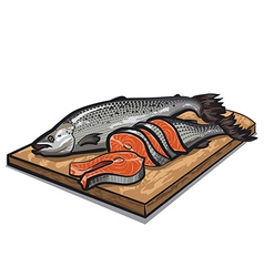 raw salmon vector image