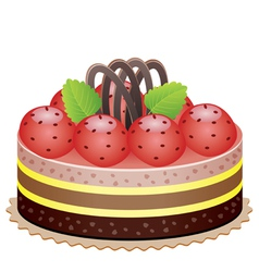 cake with strawberry vector image vector image