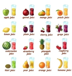Fruits Juice Icon Set vector image