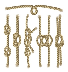 Knots Collection Set vector image