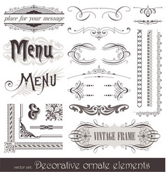 vintage filigree elements vector image vector image