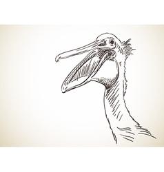 pelican vector image vector image
