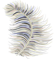 Feather down fluffy vector