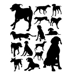 german shorthaired pointer dog animal silhouette vector image