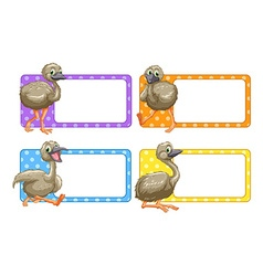 Label design with baby ostriches vector image