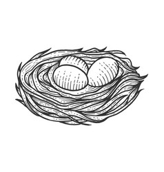 nest with eggs sketch engraving vector image