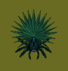 spider with tropical leaf tarantula with plant vector image