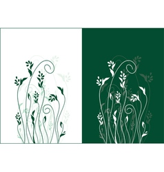 floral background refined and beautiful ideally fo vector image vector image