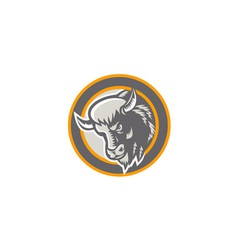 American Buffalo Bison Head Circle Retro vector
