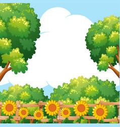 background scene with sunflowers in garden vector image