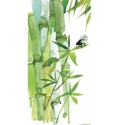 Decorative watercolor bamboo background for your vector image