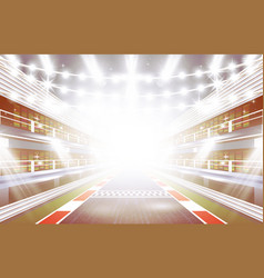 race track arena with spotlights and finish line vector image