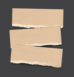 torn paper banners vector image