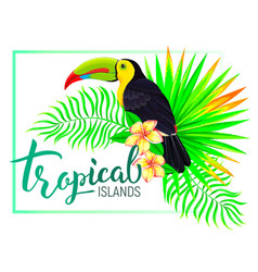 Tropical island composition with toucan leaves vector