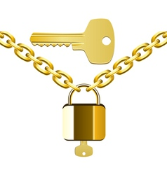 chain lock and key vector image vector image