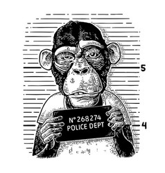 Monkeys in a t-shirt holding a police department vector