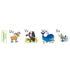 animals alphabet or abc vector image