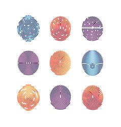 Colorful fingerprints icons - biometric info vector