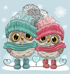 Cute owls boy and girl vector