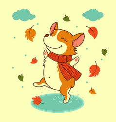 dog jumping on the autumn puddles welsh vector image